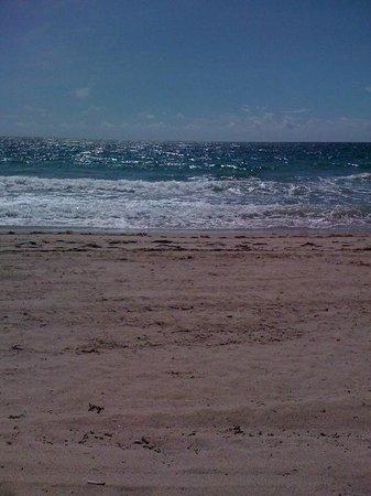 Windjammer Resort : Lauderdale by the Sea beach, nice sand, no rocks, great scuba.