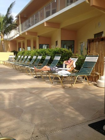 Windjammer Resort : These pool loungers were from 2011 or 2012, they have been nicely updated in 2014.
