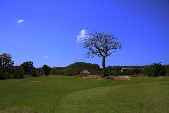 Island Golf Trip Bali