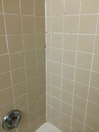 Ramada Watertown: Tile mildew