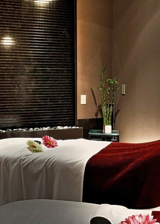 Windsor Arms Hotel: Couples Massage Room