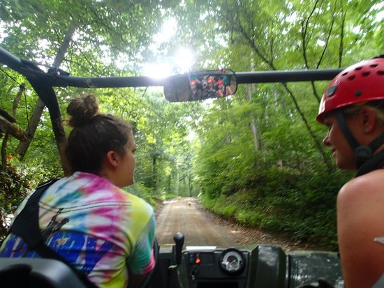 Tree Frog Canopy Tours Zipline: Ride to the top