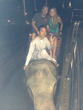Elephant Safari Park & Lodge: Being picked up from our hotel room for dinner by an elephant!