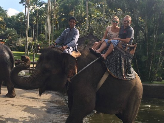 Elephant Safari Park & Lodge: Safari Ride through the park