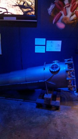 History of Diving Museum : Collapsible decompression chamber