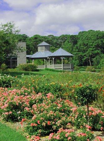 Norfolk Botanical Garden: View of Garden and Gazebo