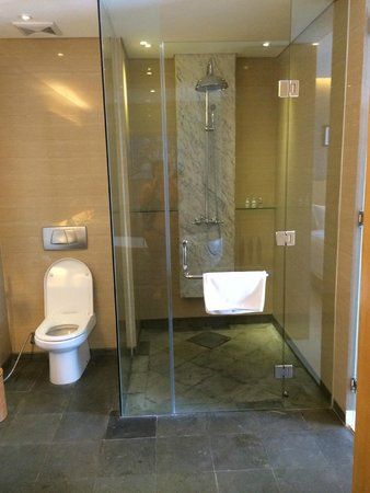 Ossotel : Big shower with a strong hot water flow (unlike some local hotels)