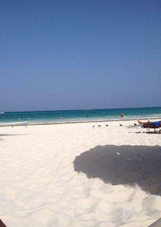 Secrets Maroma Beach Riviera Cancun: The beach at Secrets Maroma