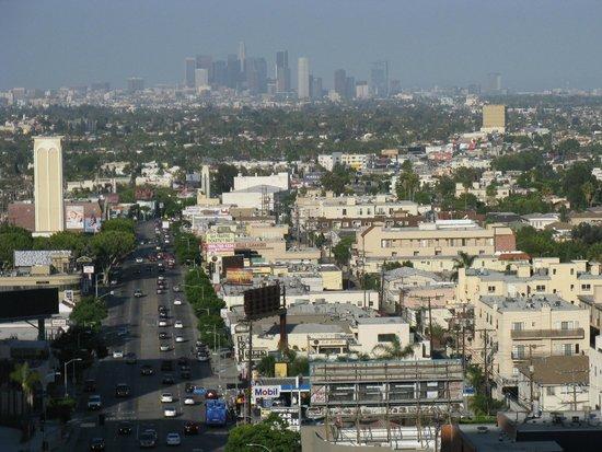 Mr. C Beverly Hills: Downtown LA