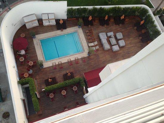Mr. C Beverly Hills: Pool