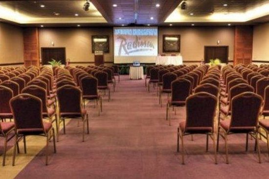 Tahiti Pearl Beach Resort: Meeting Room