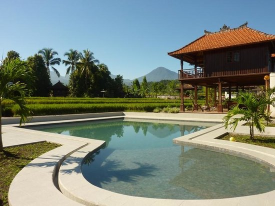 Atres Villa Homestay : Atres villa swimming pool