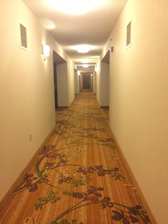 Philadelphia Airport Marriott: hallway