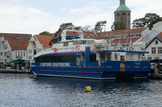 Rodne Fjord Cruise