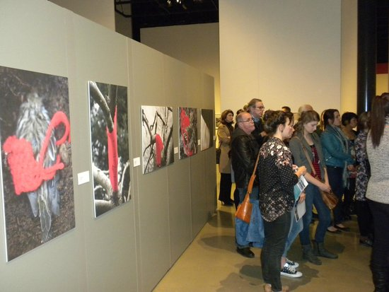 The Reach Gallery Museum Abbotsford : Portion of Crowd Listening to Artist Presentation
