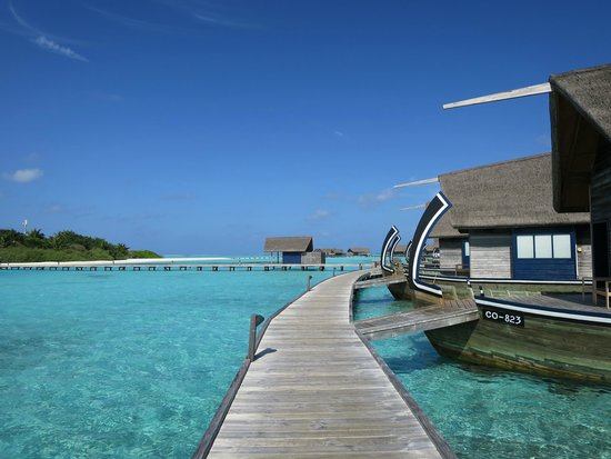 Cocoa Island by COMO: The boardwalk to the rooms
