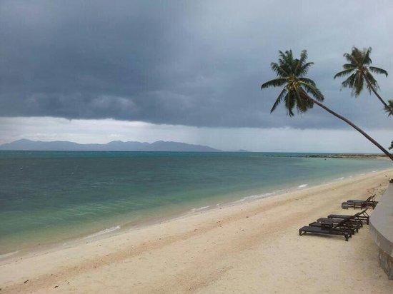 Mimosa Resort & Spa: Beautiful Beach...