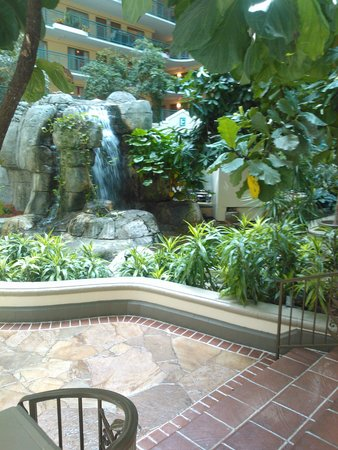 Embassy Suites by Hilton Miami - International Airport: Breakfast area