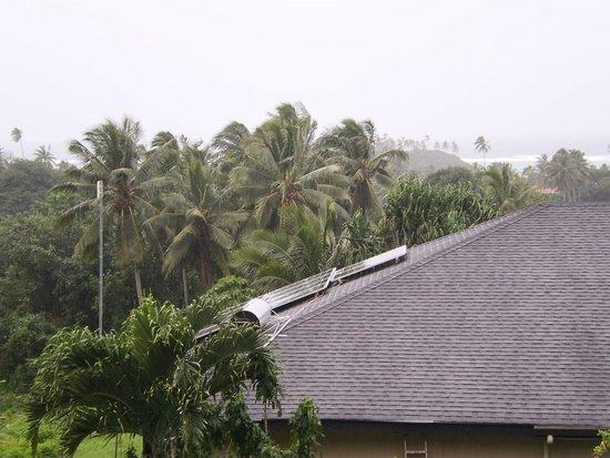 Muri Retreat : Bedroom view if garden towards road.