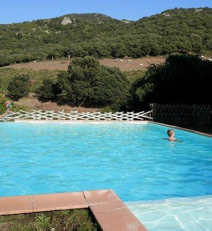 Domaine Pero Longo : La piscine