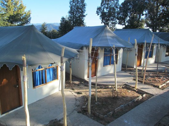 Treehouse Chail Villas: Tents at Chail Villas