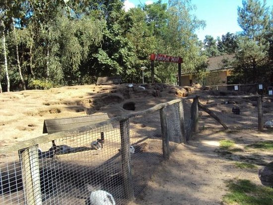 Landal Rabbit Hill : rabit hill