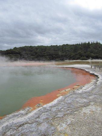 Wai-O-Tapu Thermal Wonderland: Gorgeous geothermal pool