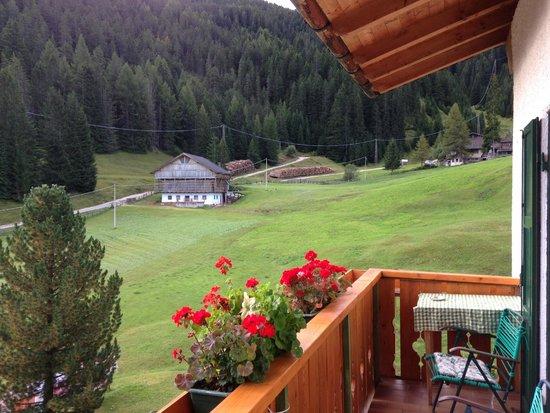 Villa Insam: view from room