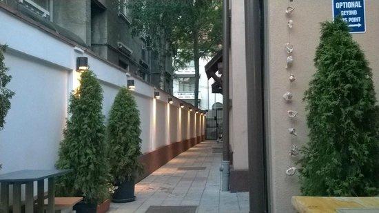 Crazy Duck Hostel: Terrace
