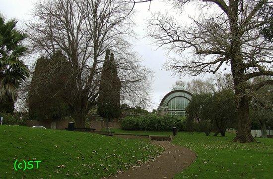 Auckland Domain: Winter Garden