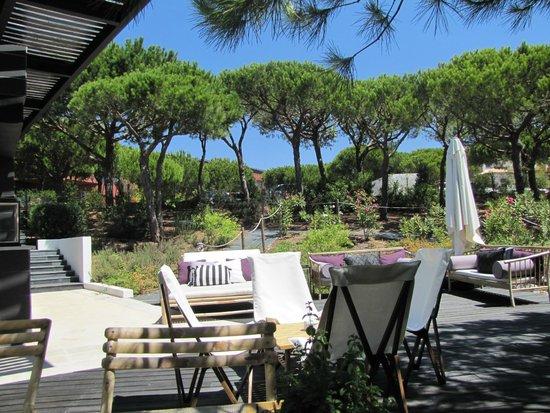 Praia Verde Boutique Hotel : de tuin vanaf de poolbar