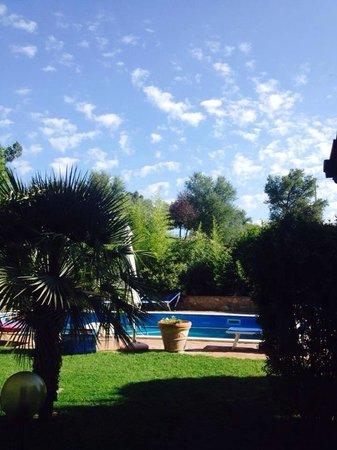 Agriturismo da Lorena : La bellissima piscina !!!!