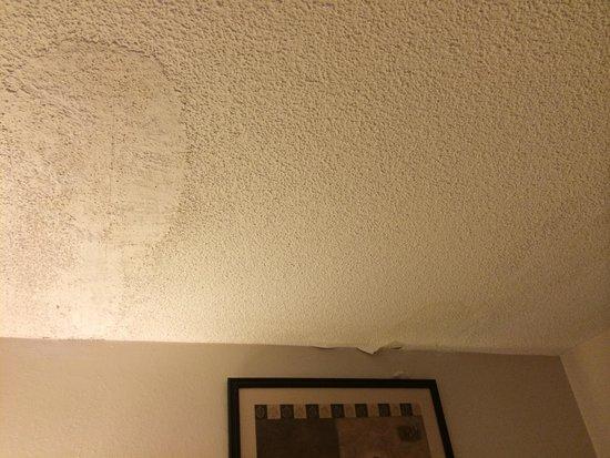 Varsity Inn : Peeling paint and water stain..