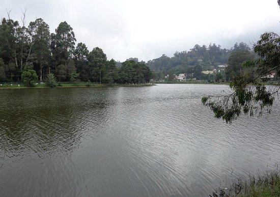 Kodaikanal Lake : 湖