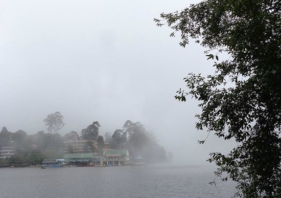 Kodaikanal Lake : 霧が立ち込め始めた湖