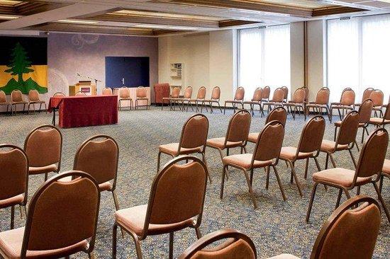 Alpine Classic Hotel Leysin : Meeting Room
