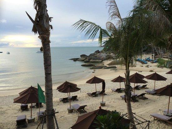 Buri Rasa Koh Phangan : Room View 2