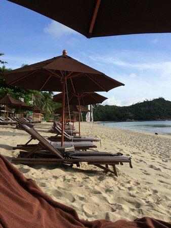 Buri Rasa Koh Phangan : Beach Buri Rasa Ko Phangan