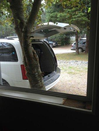 MacKenzie Beach Resort: parking lot outside window