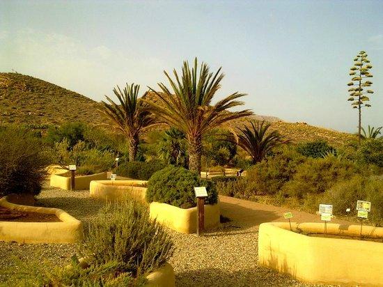 Rodalquilar, Ισπανία: Jardín botánico del Albardinal