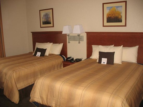 Candlewood Suites Lexington : Studio Suite with two beds