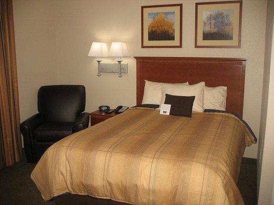 Candlewood Suites Lexington : Studio Suite with 1 Queen Bed
