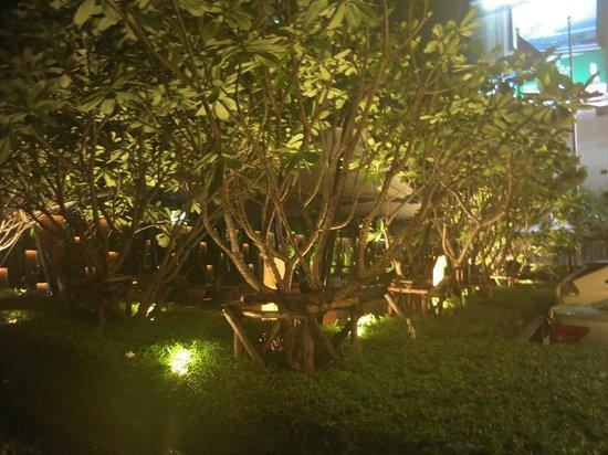 Crowne Plaza Bangkok Lumpini Park: Grounds