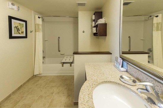 Hampton Inn Presque Isle: Handicap Accessible Bath