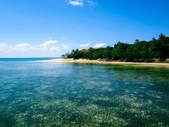 Green Island Cruise - Day Tour (Big Cat Green Island Reef Cruise): Clear water