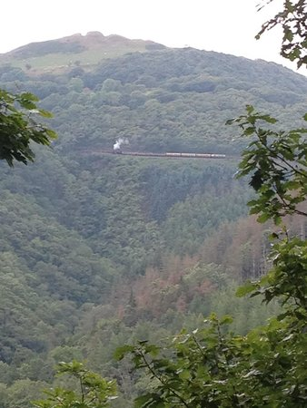 Vale of Rheidol Railway: Clings to the side of the mountain!!!!!