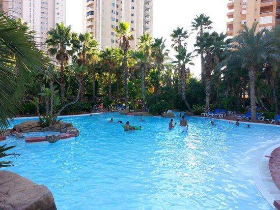 Melia Benidorm: piscina exterior