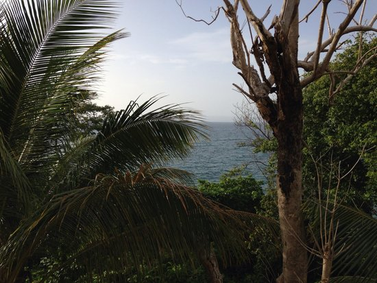 Luxury Bahia Principe Cayo Levantado: Terrace view