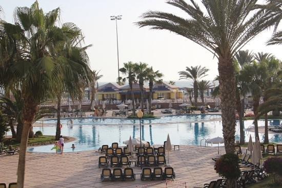Iberostar Founty Beach : Pool