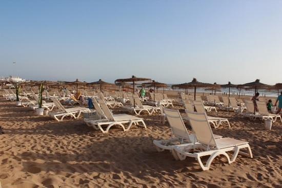 Iberostar Founty Beach : beach